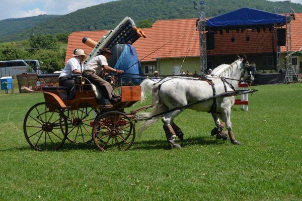 bodoki-falunapok-2016-zilele-satului-2960450821-A81E-8E2C-AD75-85F4477E1E32.jpg