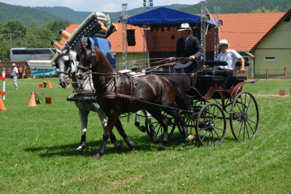 bodoki-falunapok-2016-zilele-satului-32B090CB23-9C4B-2623-480C-B4EC8D90E40E.jpg