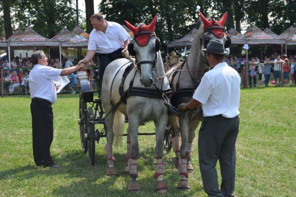 bodoki-falunapok-2016-zilele-satului-50C31C4F2F-200E-E153-09CF-005E9B76F188.jpg